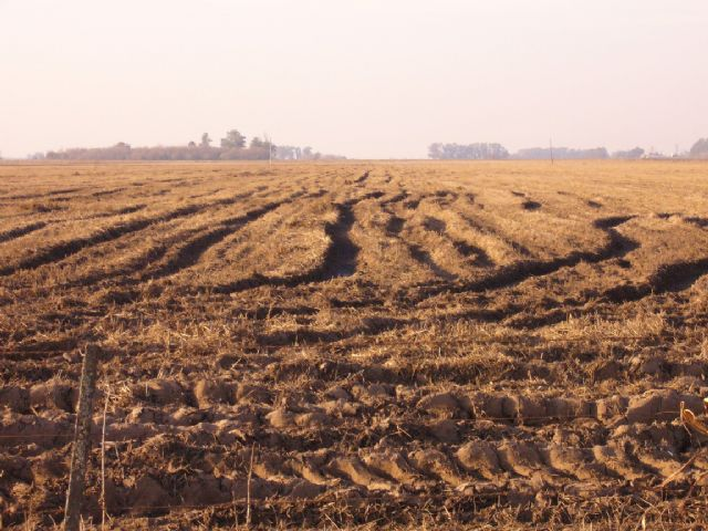 7 de julio d a nacional de la conservaci n del suelo for Recurso clausula suelo